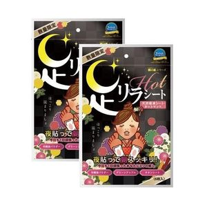 KINOMEGUMI Foot Detox Patch HOT 6 sheets x 2 packs