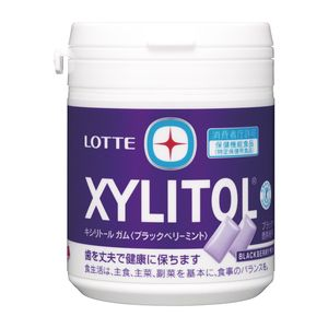 LOTTE XYLITOL Gum Black Berry Mint Family Bottle 143g