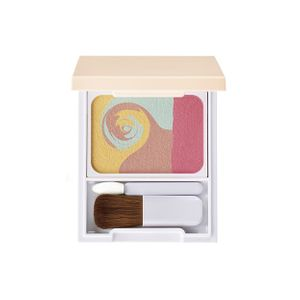 POLA diem couleur Color Blend Concealing Powder SPF18 PA++ 5g