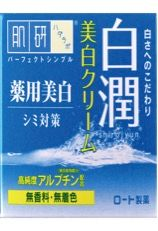 ROHTO Hadalabo Shirojun Medicated Whitening Cream