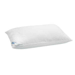 TEMPURE traditional pillow 3type